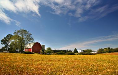 Scenic Farm Landscape © SNEHIT