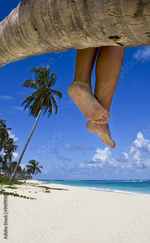Tanned legs on the palm on the beach with white sand