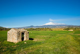 house abandoned in green field, on background volcano Etna poster