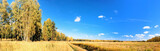 vibrant image of rural road and blue sky panorama poster