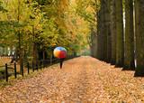 woman with rainbow umbrella strolling through fall foliage poster