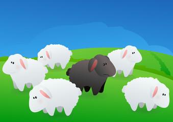 Moutons blanc et mouton noir dans une champ