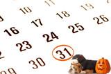 bulldog wearing black cat costume on october calendar poster