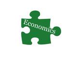 Economics Puzzle Piece poster