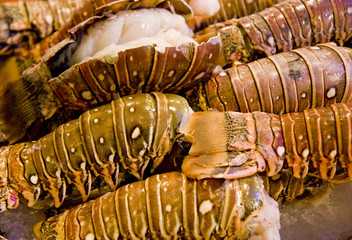 Stacks of Fresh Lobster Tails in a seafood market