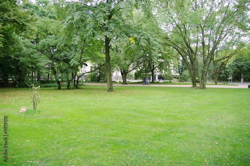 Pelouse dans un jardin public en allemagne de bruno for Pelouse tarif
