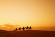 canvas print picture - Caravan in Sahara desert