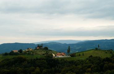 Landschaft Südsteiermark Rebenland