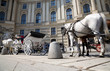Horse with coach wide angle view. Vienna city.