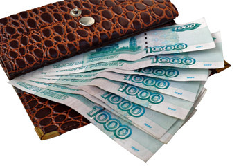 Leather purse with of the Russian monetary denominations