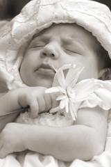 Little baby is sleeping II