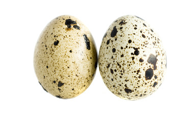 two quail eggs isolated