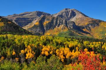 Alpine Loop Yellow Mountain