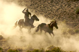 Cowboy galloping and roping wild horses through the desert