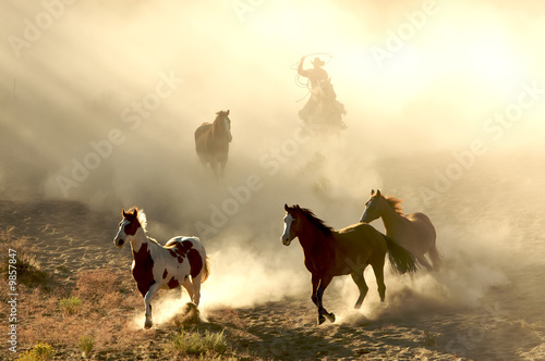 Leinwanddruck Bild Sunlight Horses and cowboy galloping and through the desert