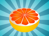Sliced half pink grapefruit fresh fruit illustration fresh