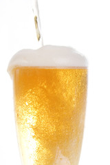 Beer being poored onto tall glass over white background