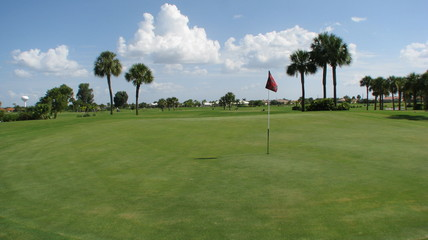 Golfing in Florida