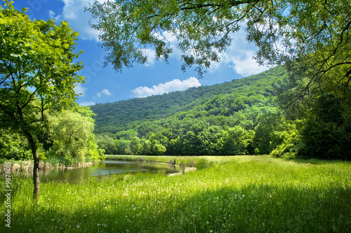 Poster Bossen summer landscape with river and blue sky