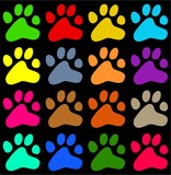 colourful paws poster