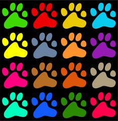 colourful paws