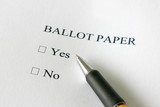 Referendum ballot paper - vote yes or no poster