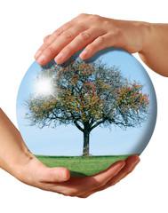 sphère nature