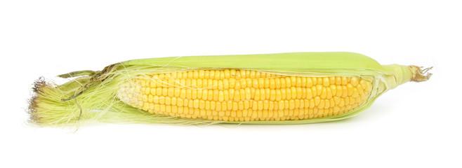 Cron maize kernels