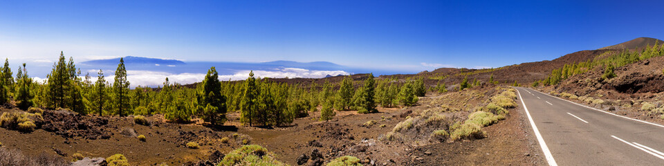 Teneriffa and LaGomera