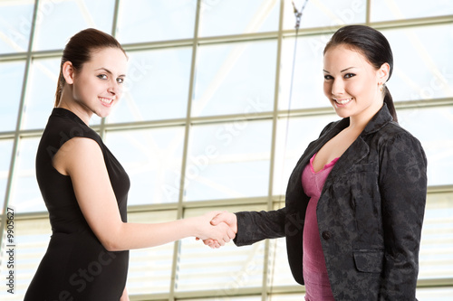 Two businesswomen shaking hands in the office