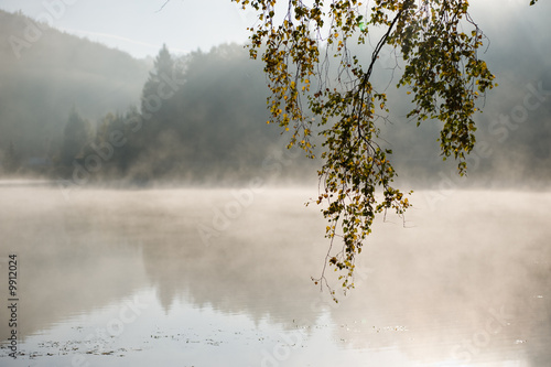 Misty lake © Viktor Pravdica