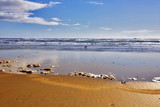 Wide sandy beach and the rests of sea foam on water poster
