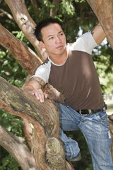 A handsome young asian man climbing a tree