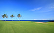 Golf Course on Green Ocean Shore of Kona Island, HI