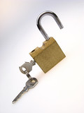 open hinged lock with inserted keys on  light background poster
