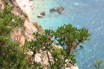 Zante - isola greca