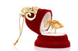 christmas jewelry box open with gold ring isolated