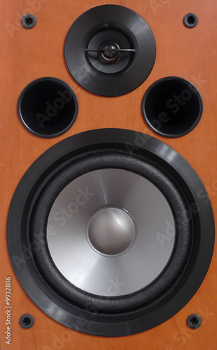 2-way wooden speaker close up.