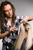 professional hairdresser doing haircut over grey background poster