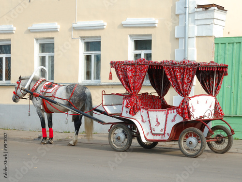 Horse and carriage on the street