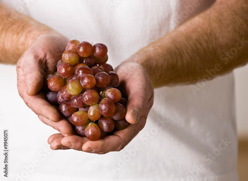 Man holding handful of wholesome, fresh grapes