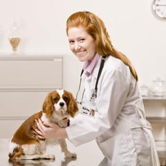 Happy veterinarian examining dog during checkup