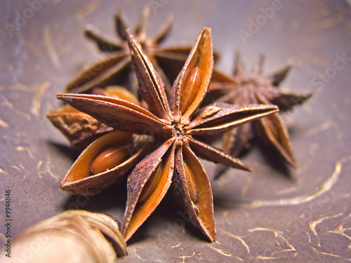 Close up details of spice star anise on coconut ladle
