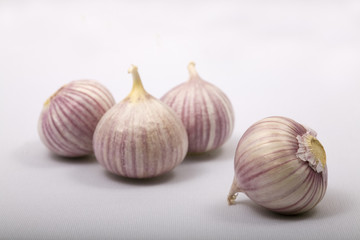 fresh garlic bulbs on white background