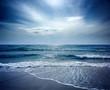 Beautiful Beach on Sealion Island