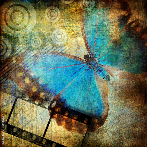 Stock Photo: Painted butterfly in grunge style 5 jpg l 2500x2500 l 25,70...