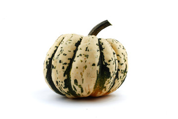 pumpkin isolated on the white background