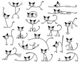 Kitty cats poster