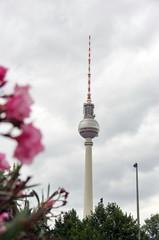 Tour de la télévision et fleurs, berlin, Allemagne.