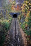 Railway tunnel in autumn scenery poster